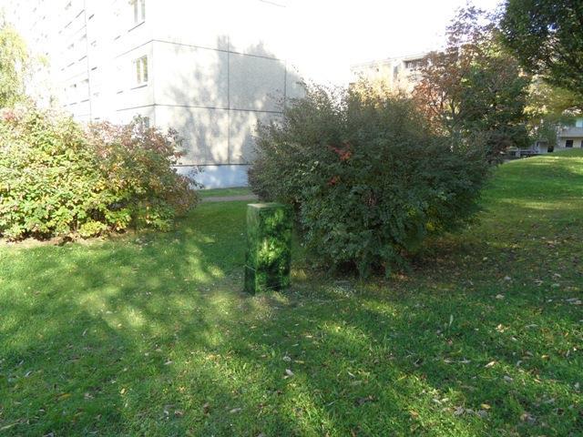 auf Grünfläche digitaler Busch neben realem Busch