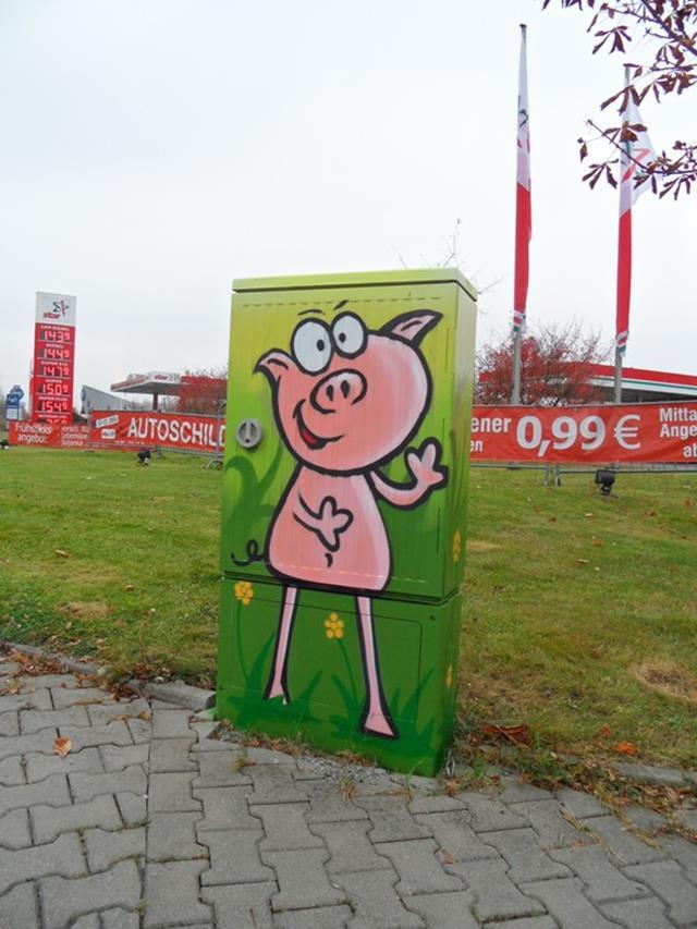 Vorderseite: Schwein auf der Wiese