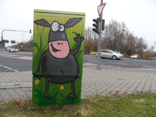 Rückseite: Schwarzes Schaf auf der Wiese