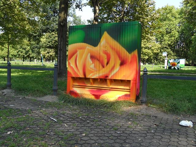 Rückseite: Orangene Rose